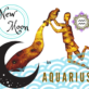 NEW MOON IN AQUARIUS 11 FEBRUARY 2021